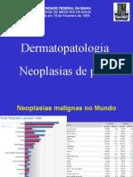 10 Aula Pele Neoplasia