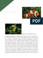 Aquatic animal & PLANTS & TERRESTRIAL PLANTS & ANIMALS.doc