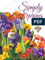 simplyspring-2015 compressed