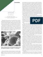 hyaloclastite altertation.pdf