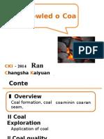 Basic Knowledge of Coal