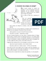 Conejo - Cuento Intercultural