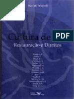 Cultura de Paz - Restaurativa e Direitos