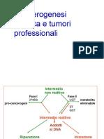 Cancerogenesi Chimica e Tumori Professionali
