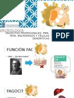 FAGOCITOS PROFESIONALES