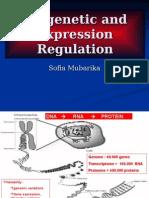 Epigenetic and Expression Regulation -.ppt