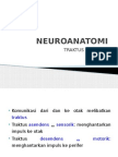 Neuroanatomi - Traktus Sensorik - Edit