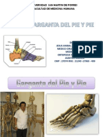 CLASE GARGANTA DEL PIE Y PIE . JAAC.pdf