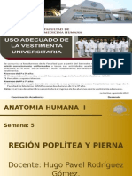 Clase Region Poplitea