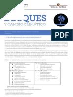 Bosques y cambio climático