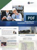 Ingenieria industrial - pucp