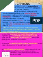 carbohidratos 1-2