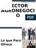 SECTOR AGRONEGOCIO.ppt