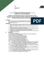 DIRECTIVA FINALIZACION-2014(13-12-12).docx