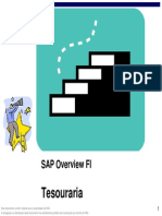SAP Overview FI Tesouraria