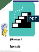 SAP Overview FI Tesouraria