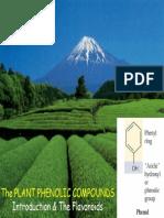 Plant Phenolic Compounds 2007