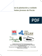 INTA Guia de Plantacion Pecan.pdf