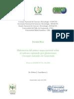primer mapa nacional de carbono.pdf