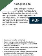 Aminoglikosida.pptx