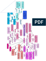 Mapa_Conceitual__Msculos_Torcicos_Respiratrios.pdf