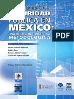 06INDICADORES_SEGURIDAD.pdf