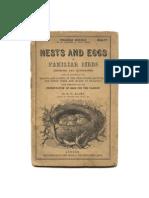 Bird and nests botanical images