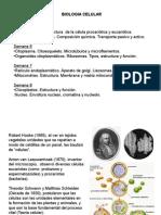Biologia celular y Molecular (Biologia celular).ppt