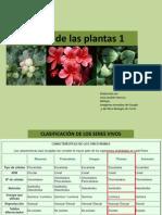 El reino de las plantas.pdf