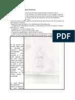 test Dibujo de la Figura Humana.docx