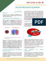 PK_DIP_ES.pdf