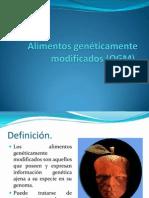 01 Alimentos genéticamente modificados.pdf