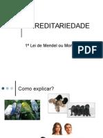 A História de Mendel