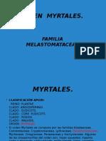 Orden Myrtales