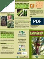 Cultura Da Bananeira Plantio e Adubacao