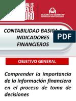 CONTABILIDAD BASICA E INDICADORES.PDF