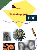 Virusurile gripale rezidenti