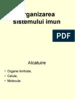 3aOrganizarea sistemului imun