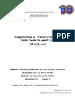 Diagnósticos e Intervenciones en Enfermería Psiquiátrica