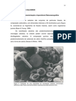 NanofosseisCalcarios.pdf