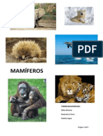 Practica mapa conceptual.pdf
