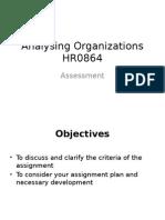 212696_164511072_AnalysingOrganizations