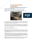 Cómo Es El Proceso Para La Elaboración Del Pan