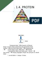 Bab v Protein