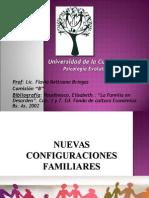 Nuevas Configuracions Familiares 2014