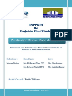 rapport memoire MOUSSA MERIEM final.pdf