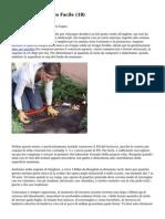 Article   Giardinaggio Facile (18)