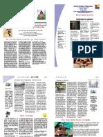 rio Mes de Febrero 2010 PDF