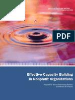 McKinsey Capacity Building Report