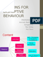 Reasons for Disruptive Behaviour
